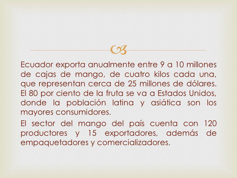 Ecuador exporta anualmente entre 9 a 10 millones de cajas de mango, de cuatro kilos cada una, que representan cerca de 25 millones de dólares. El 80 p