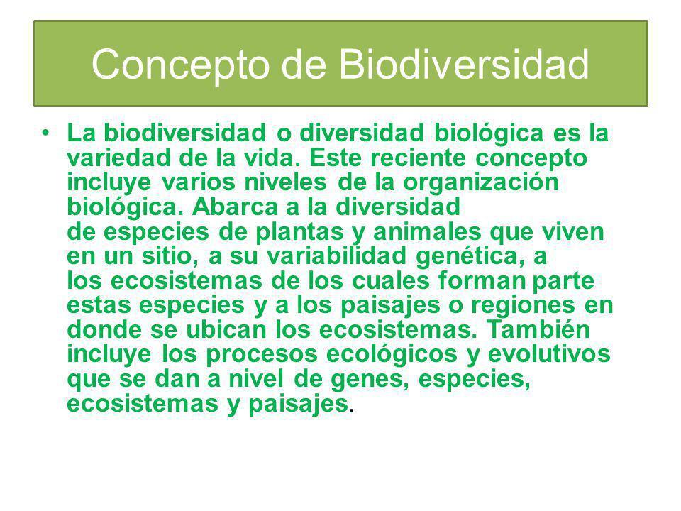 Concepto de Biodiversidad La biodiversidad o diversidad biológica es la variedad de la vida. Este reciente concepto incluye varios niveles de la organ