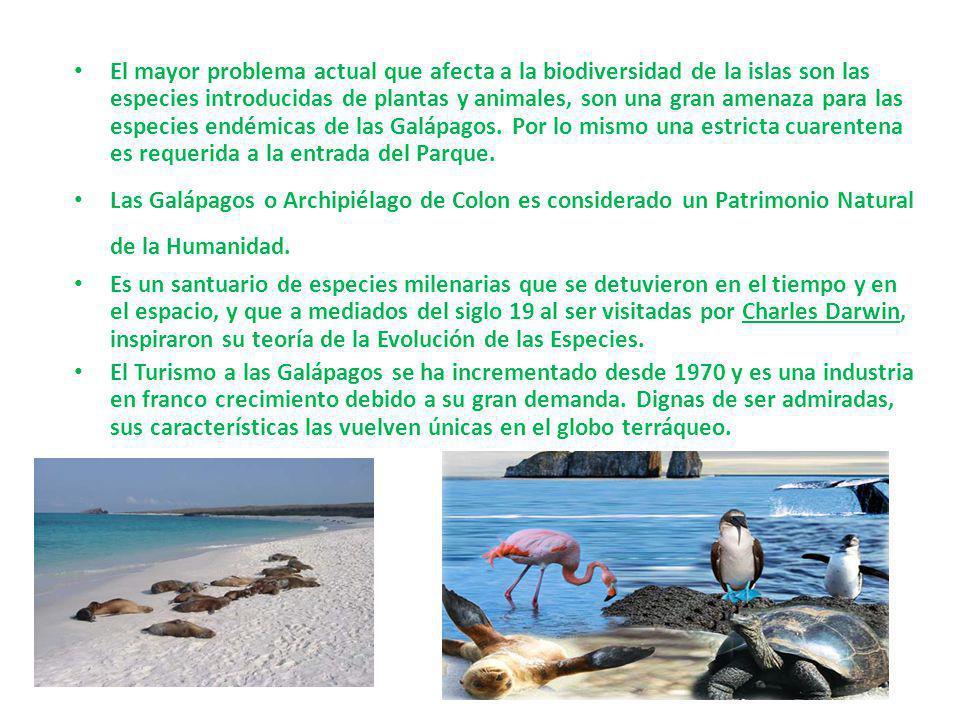 El mayor problema actual que afecta a la biodiversidad de la islas son las especies introducidas de plantas y animales, son una gran amenaza para las
