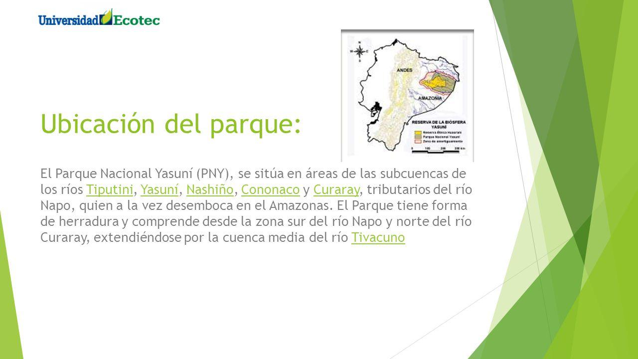 Ubicación del parque: El Parque Nacional Yasuní (PNY), se sitúa en áreas de las subcuencas de los ríos Tiputini, Yasuní, Nashiño, Cononaco y Curaray,