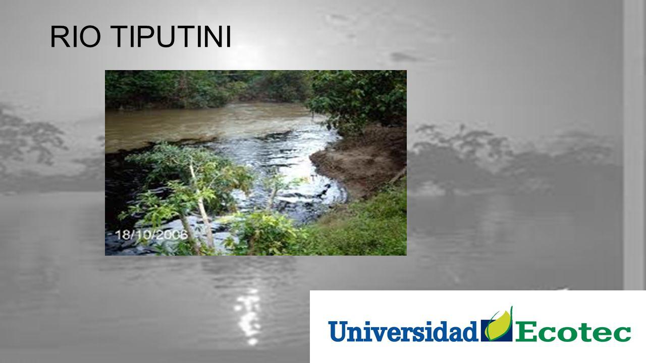 El Parque Nacional Yasuní Ubicado en la región amazonica Es la región de mayo diversidad biológica del mundo