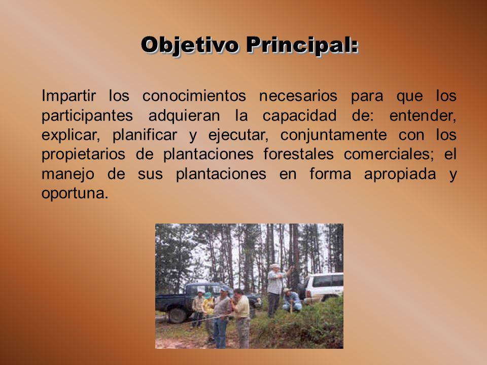 Objetivo Principal: Impartir los conocimientos necesarios para que los participantes adquieran la capacidad de: entender, explicar, planificar y ejecutar, conjuntamente con los propietarios de plantaciones forestales comerciales; el manejo de sus plantaciones en forma apropiada y oportuna.