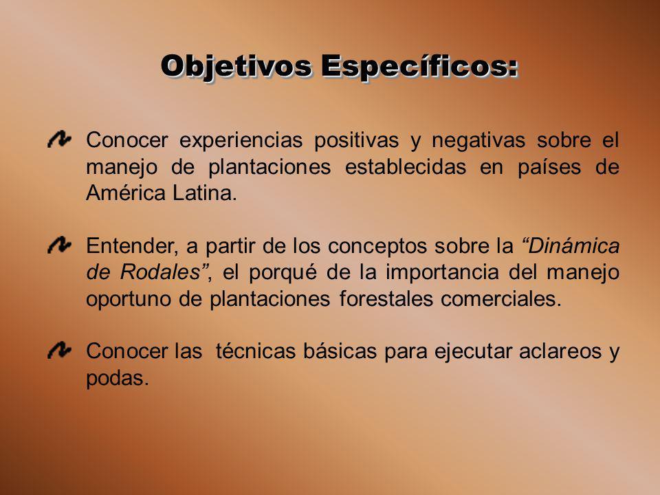 Objetivos Específicos: Conocer experiencias positivas y negativas sobre el manejo de plantaciones establecidas en países de América Latina. Entender,
