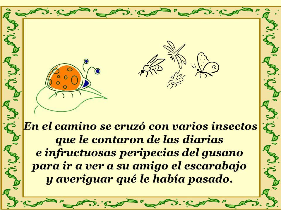 En el camino se cruzó con varios insectos que le contaron de las diarias e infructuosas peripecias del gusano para ir a ver a su amigo el escarabajo y