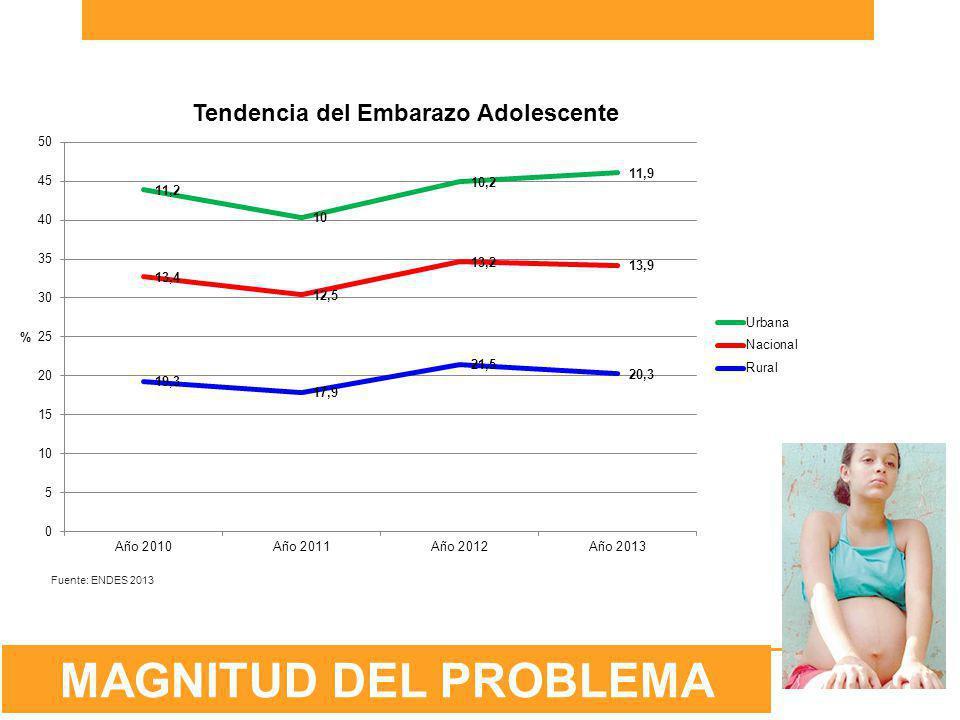 Fuente: ENDES 2013 MAGNITUD DEL PROBLEMA