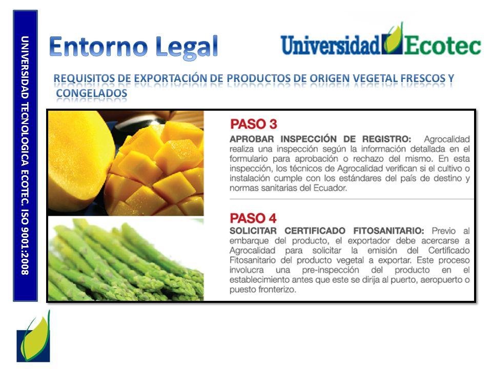 UNIVERSIDAD TECNOLOGICA ECOTEC.
