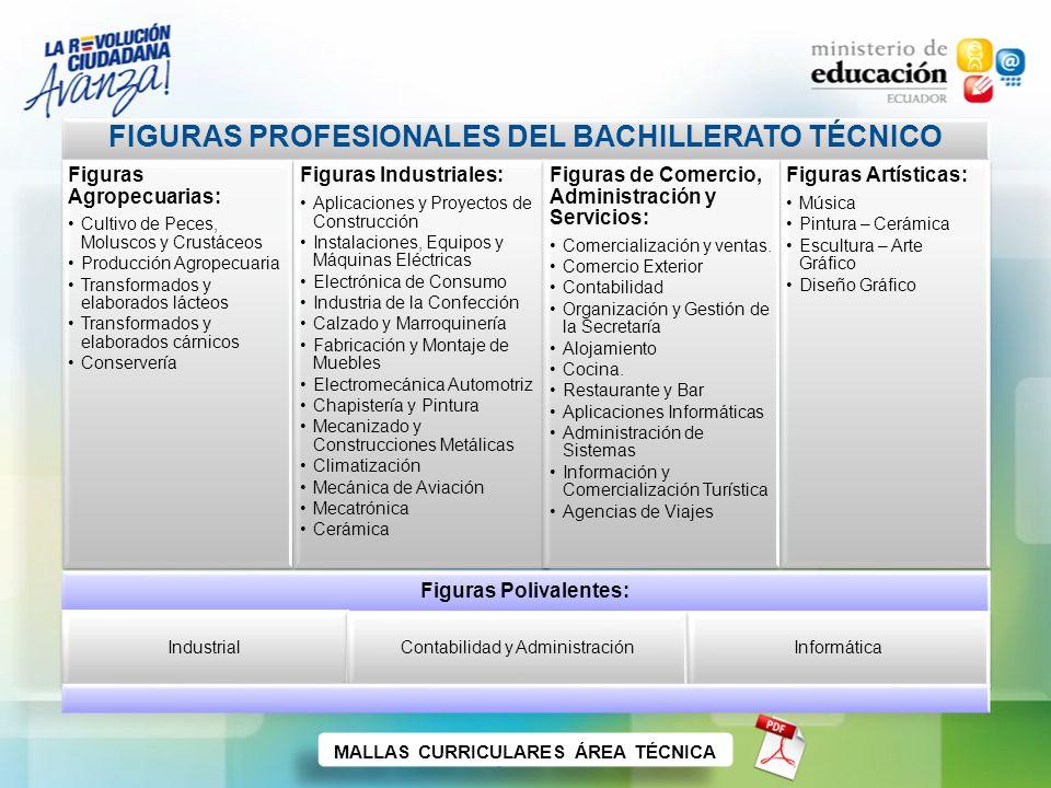 Cronograma de implementación del NBE Como se puede apreciar en el cronograma a continuación, la aplicación del nuevo Bachillerato será progresiva y empezará únicamente con los estudiantes que ingresen al primer año, en el año lectivo 2011-2012 (régimen de Sierra) y en el año lectivo 2012-2013 (régimen de Costa).