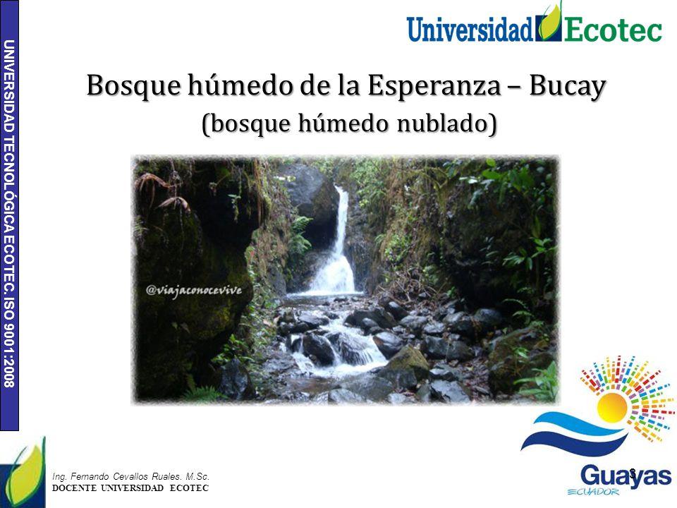 UNIVERSIDAD TECNOLÓGICA ECOTEC. ISO 9001:2008 3 Ing. Fernando Cevallos Ruales. M.Sc. DOCENTE UNIVERSIDAD ECOTEC Bosque húmedo de la Esperanza – Bucay
