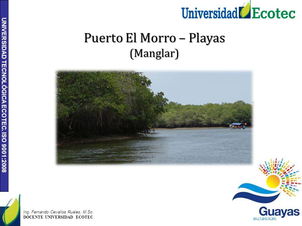 UNIVERSIDAD TECNOLÓGICA ECOTEC. ISO 9001:2008 5 Ing. Fernando Cevallos Ruales. M.Sc. DOCENTE UNIVERSIDAD ECOTEC Puerto El Morro – Playas (Manglar)