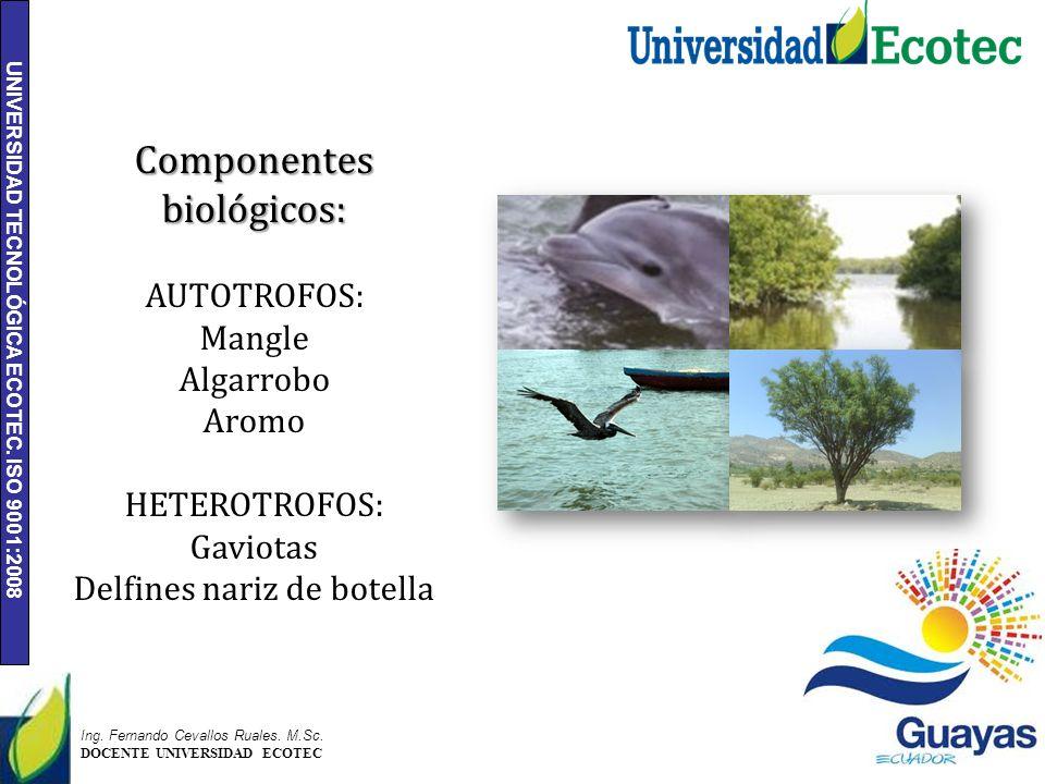UNIVERSIDAD TECNOLÓGICA ECOTEC. ISO 9001:2008 6 Ing. Fernando Cevallos Ruales. M.Sc. DOCENTE UNIVERSIDAD ECOTEC Componentes biológicos: AUTOTROFOS: Ma
