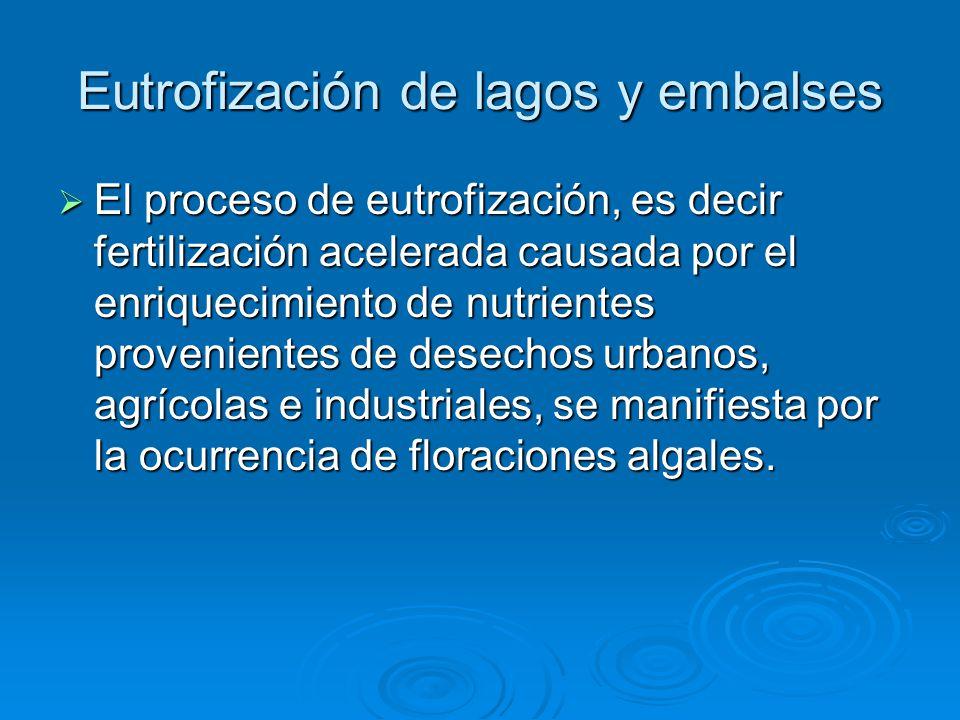 Eutrofización de lagos y embalses El proceso de eutrofización, es decir fertilización acelerada causada por el enriquecimiento de nutrientes provenien
