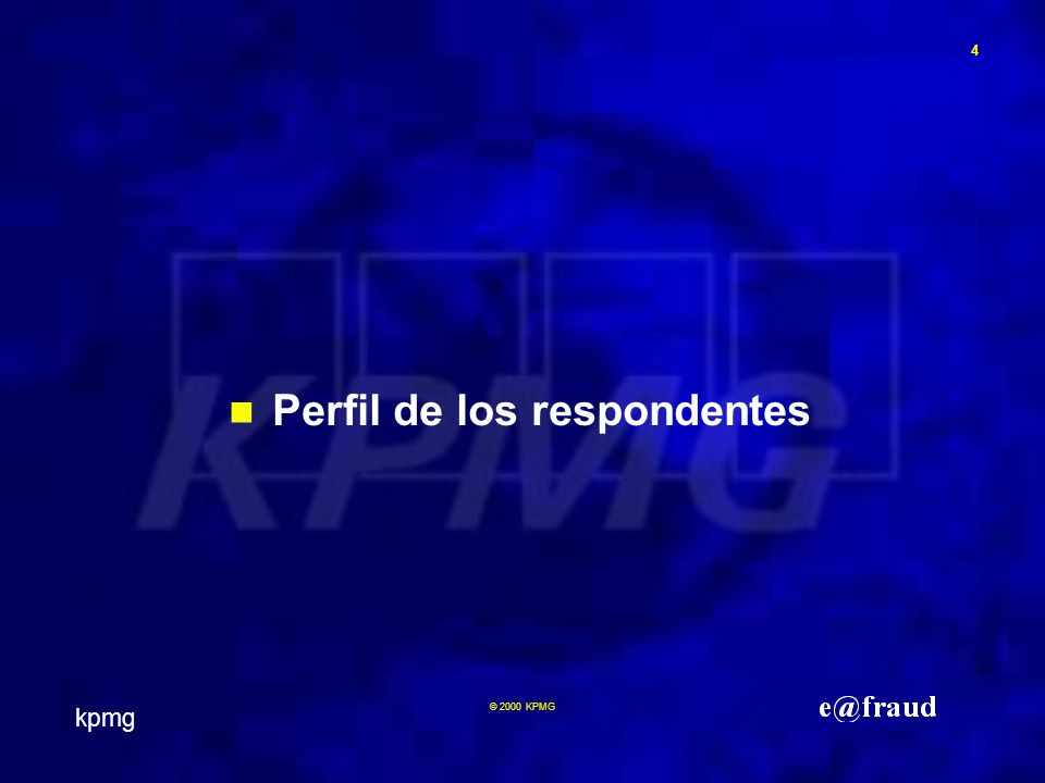 kpmg 4 © 2000 KPMG Perfil de los respondentes