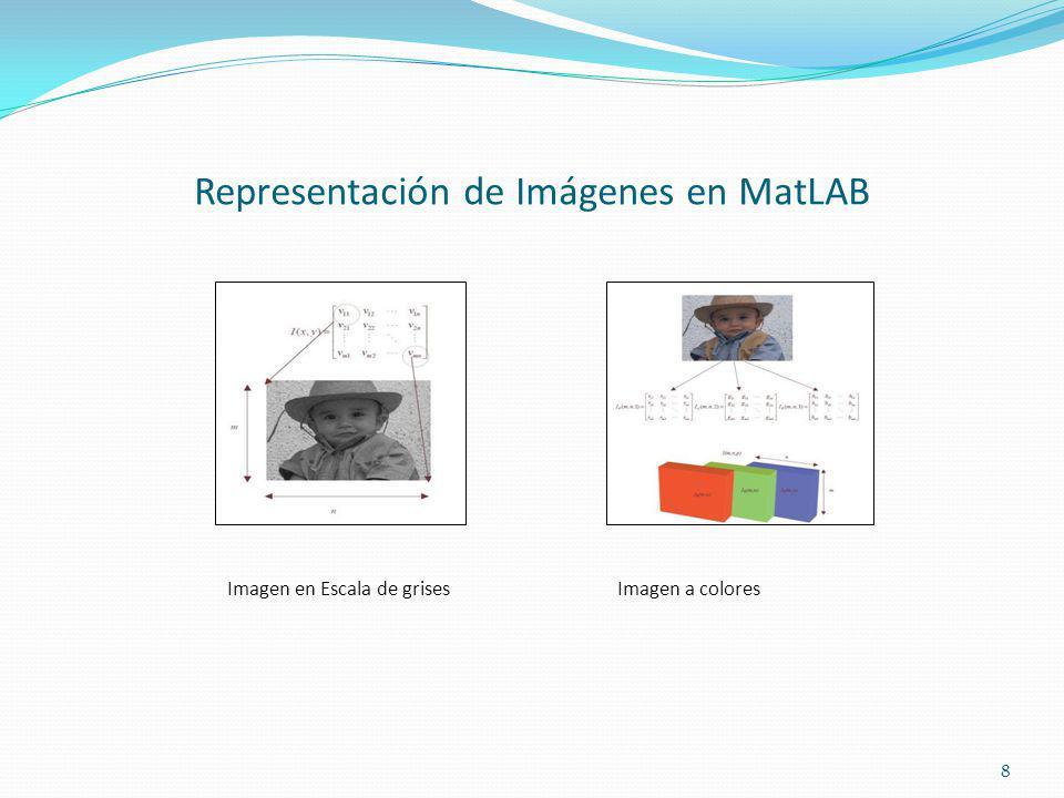 Representación de Imágenes en MatLAB Imagen en Escala de grisesImagen a colores 8