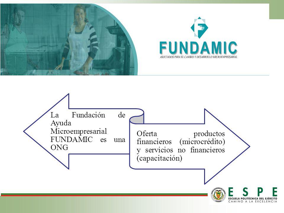 La Fundación de Ayuda Microempresarial FUNDAMIC es una ONG Oferta productos financieros (microcrédito) y servicios no financieros (capacitación)