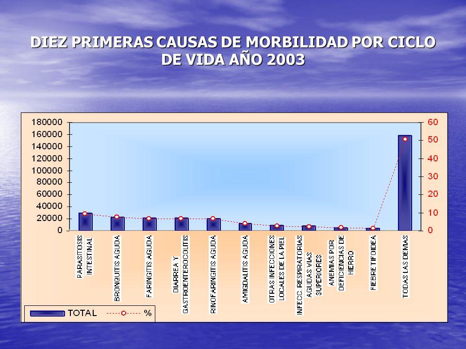 DIEZ PRIMERAS CAUSAS DE MORBILIDAD POR CICLO DE VIDA AÑO 2003