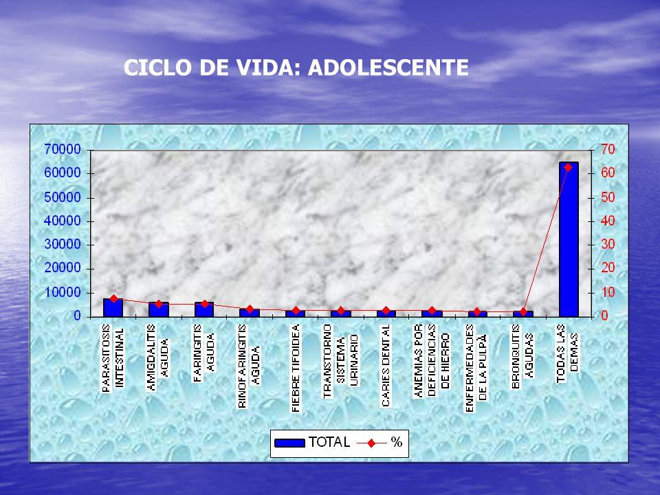 CICLO DE VIDA: ADOLESCENTE