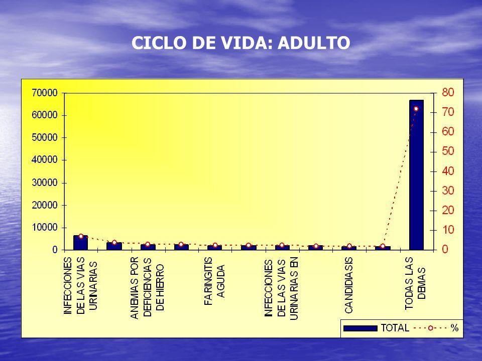 CICLO DE VIDA: ADULTO