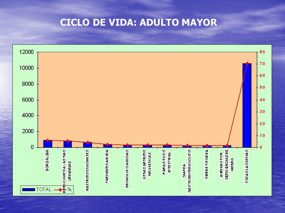 CICLO DE VIDA: ADULTO MAYOR