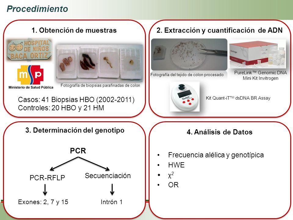 1. Obtención de muestras 4. Análisis de Datos 2. Extracción y cuantificación de ADN 3. Determinación del genotipo Casos: 41 Biopsias HBO (2002-2011) C