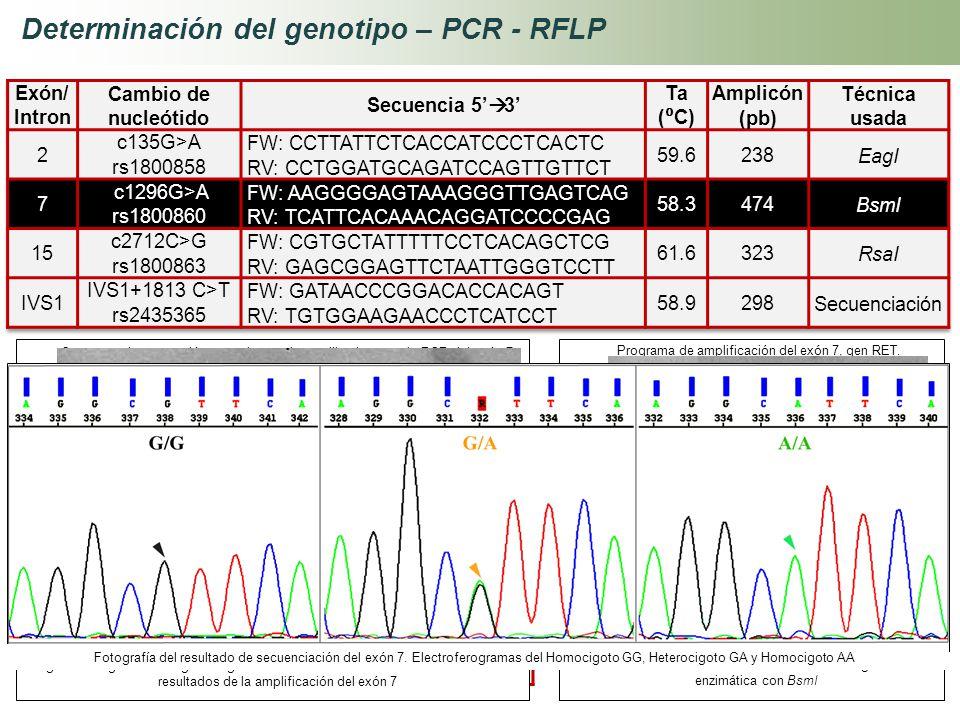 Determinación del genotipo – PCR - RFLP Reactivos Concentración inicial Concentración Final Volumen 1x (µL) ADN10 ng3 Buffer10 X1 X5 MgCl 2 50 mM1 mM1
