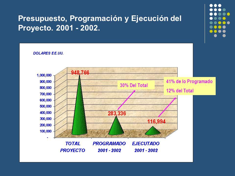 Presupuesto, Programación y Ejecución del Proyecto.