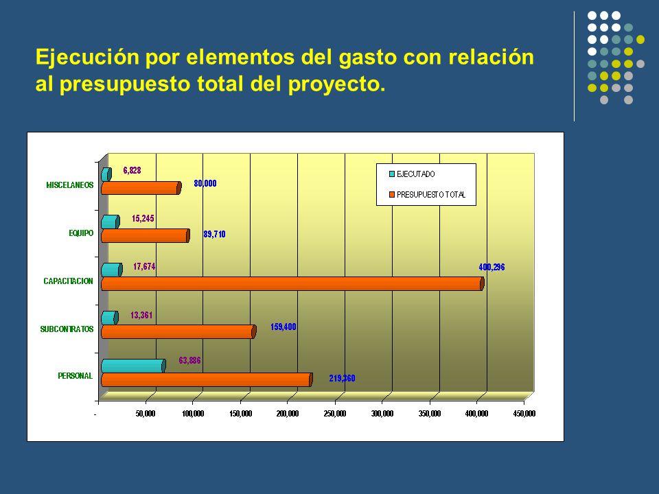 Ejecución por elementos del gasto con relación al presupuesto total del proyecto.