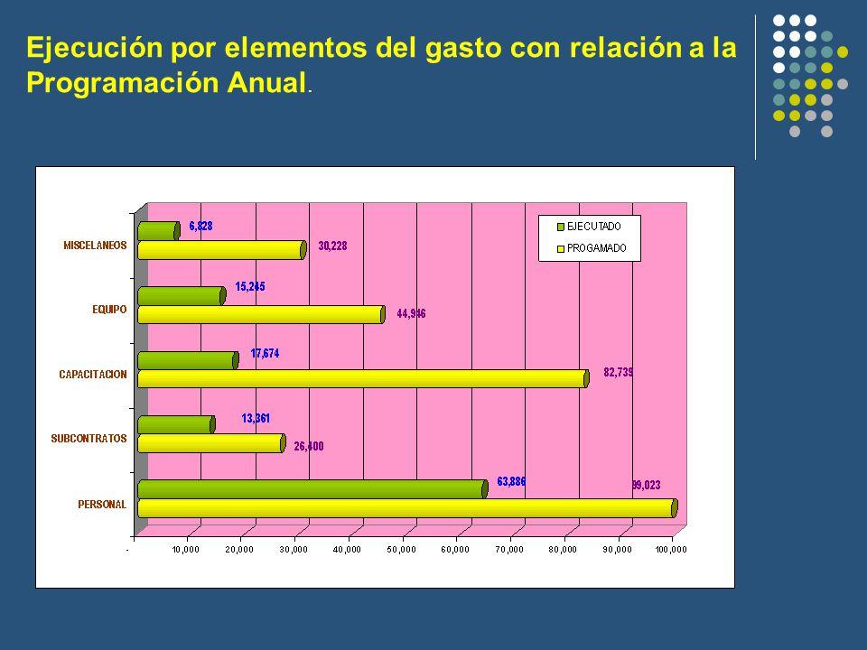 Ejecución por elementos del gasto con relación a la Programación Anual.