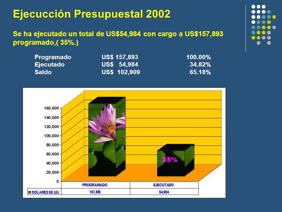 Ejecucción Presupuestal 2002 ProgramadoUS$ 157,893100.00% EjecutadoUS$ 54,984 34.82% SaldoUS$ 102,909 65.18% Se ha ejecutado un total de US$54,984 con cargo a US$157,893 programado,( 35%.)