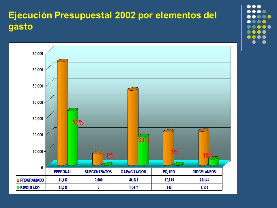 Ejecución Presupuestal 2002 por elementos del gasto
