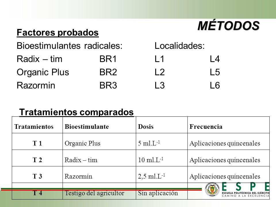 MÉTODOS Factores probados Bioestimulantes radicales:Localidades: Radix – tim BR1 L1L4 Organic PlusBR2L2L5 RazorminBR3L3L6 Tratamientos comparados Trat