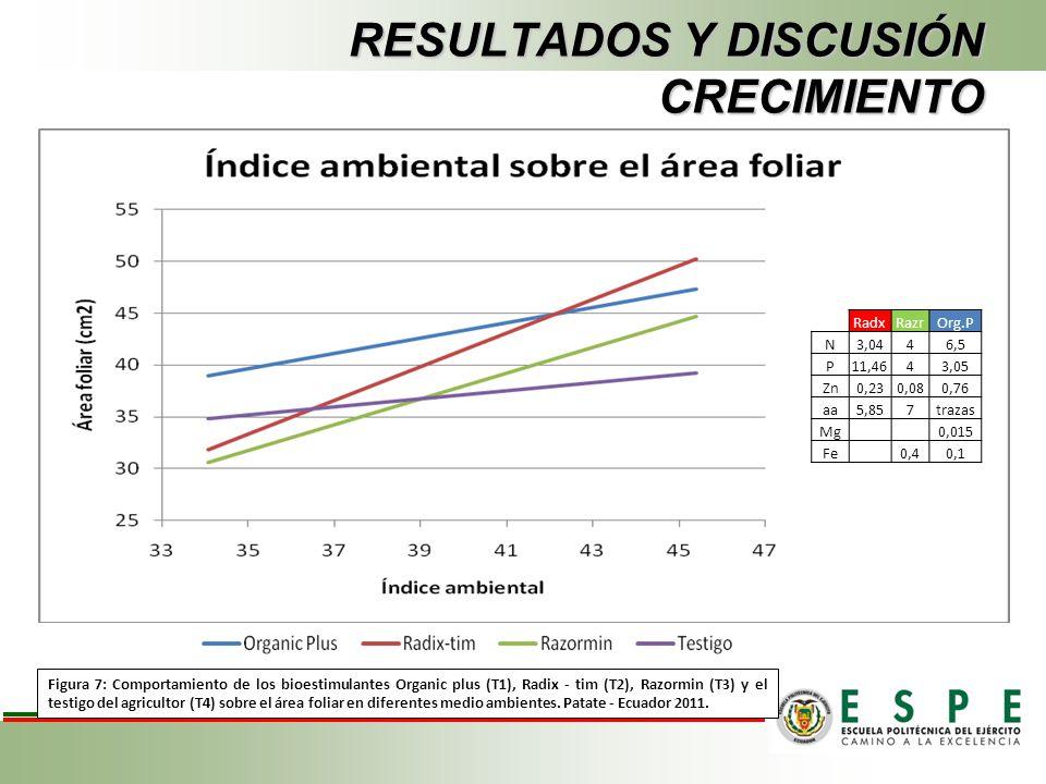 RESULTADOS Y DISCUSIÓN CRECIMIENTO Figura 7: Comportamiento de los bioestimulantes Organic plus (T1), Radix - tim (T2), Razormin (T3) y el testigo del