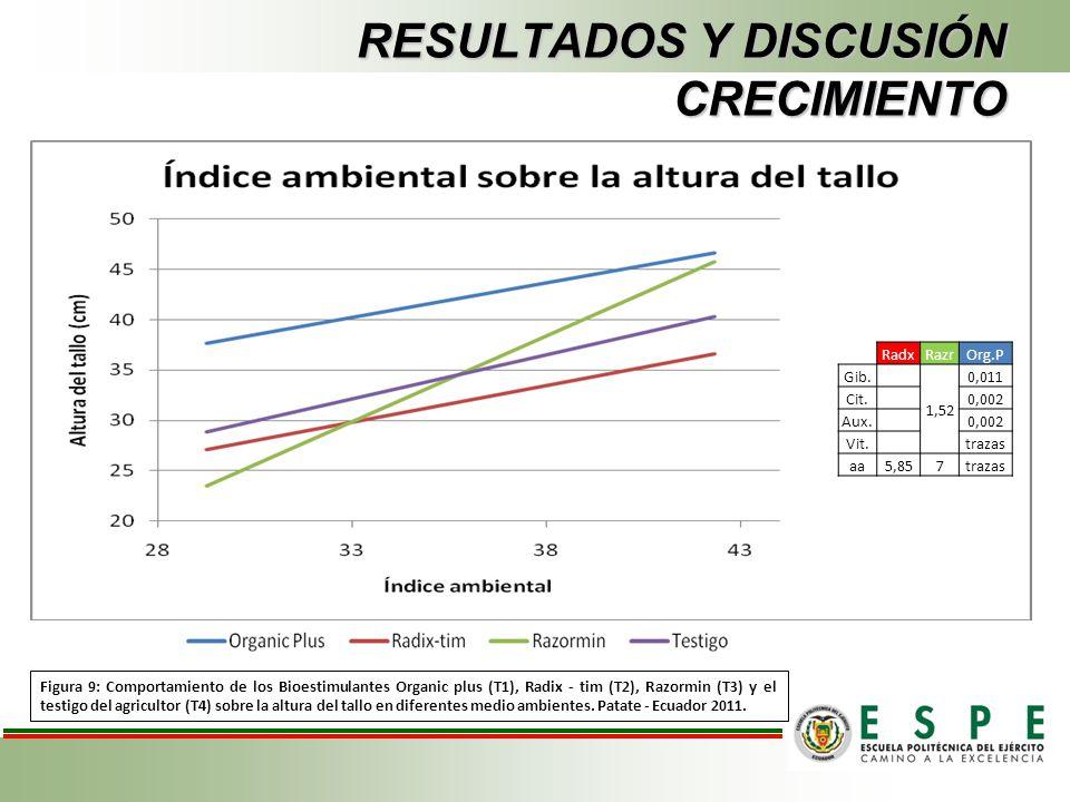 RESULTADOS Y DISCUSIÓN CRECIMIENTO Figura 9: Comportamiento de los Bioestimulantes Organic plus (T1), Radix - tim (T2), Razormin (T3) y el testigo del
