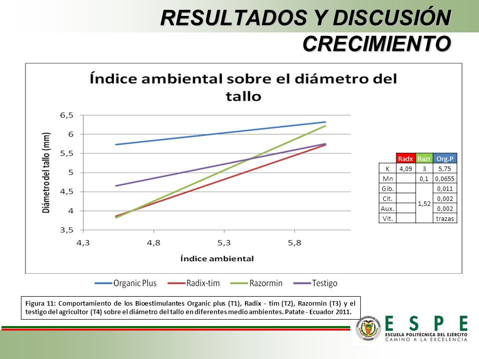 RESULTADOS Y DISCUSIÓN CRECIMIENTO Figura 11: Comportamiento de los Bioestimulantes Organic plus (T1), Radix - tim (T2), Razormin (T3) y el testigo de