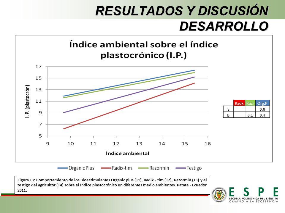 RESULTADOS Y DISCUSIÓN DESARROLLO Figura 13: Comportamiento de los Bioestimulantes Organic plus (T1), Radix - tim (T2), Razormin (T3) y el testigo del