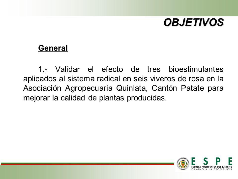 OBJETIVOS General 1.- Validar el efecto de tres bioestimulantes aplicados al sistema radical en seis viveros de rosa en la Asociación Agropecuaria Qui