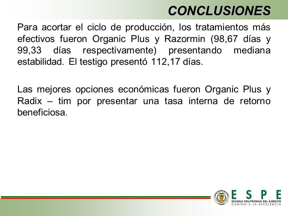 CONCLUSIONES Para acortar el ciclo de producción, los tratamientos más efectivos fueron Organic Plus y Razormin (98,67 días y 99,33 días respectivamen