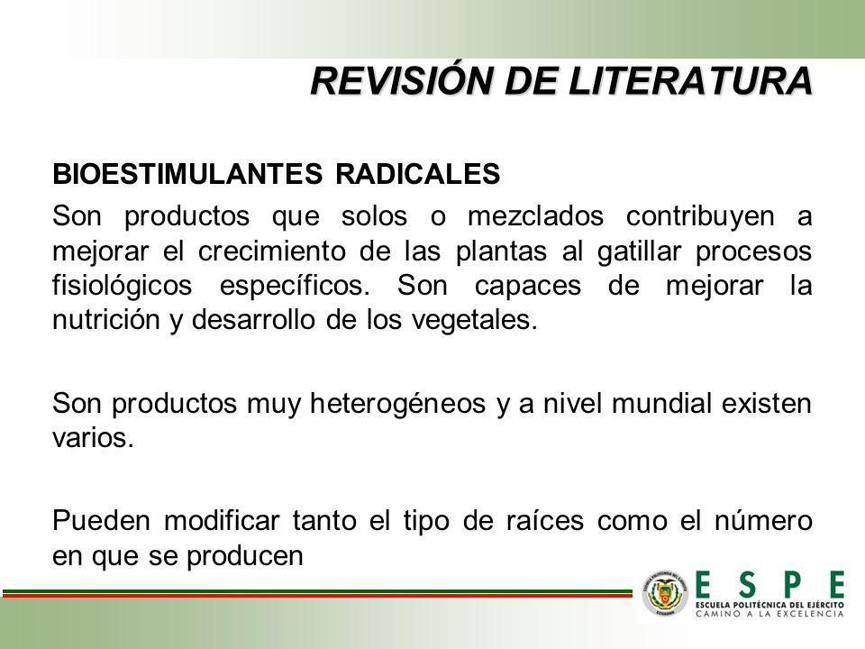 REVISIÓN DE LITERATURA BIOESTIMULANTES RADICALES Son productos que solos o mezclados contribuyen a mejorar el crecimiento de las plantas al gatillar p