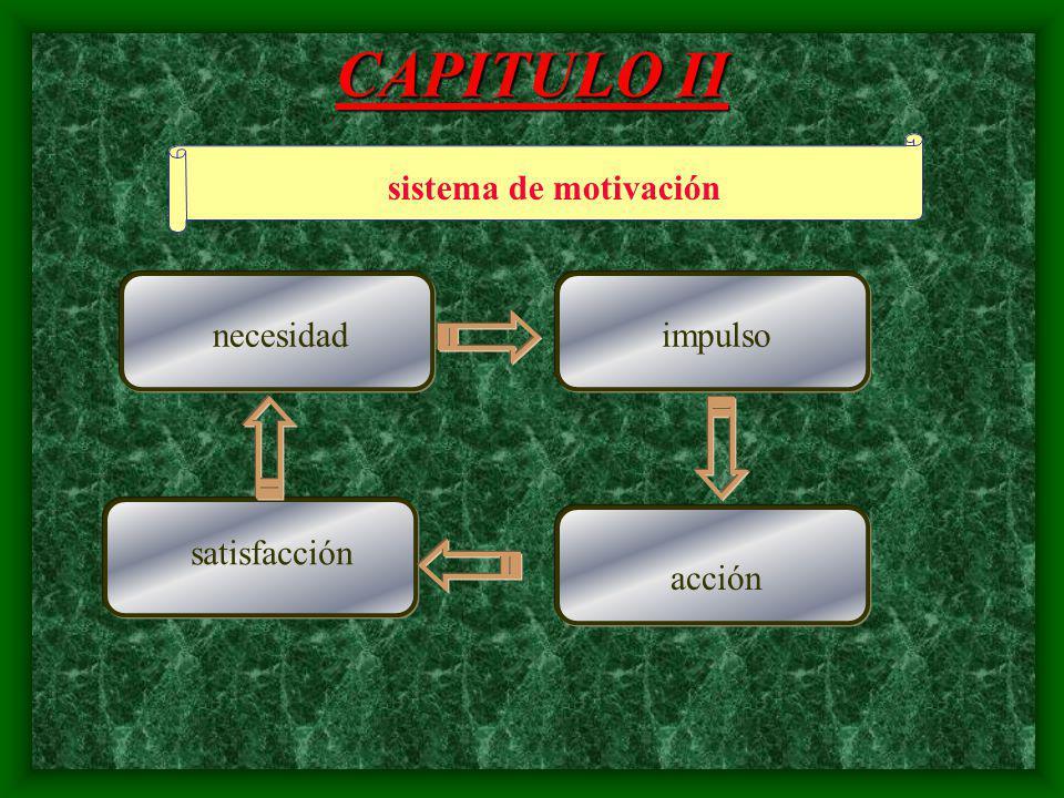 CAPITULO II Para que se motiva ? Solucionar necesidades Brindar satisfacción
