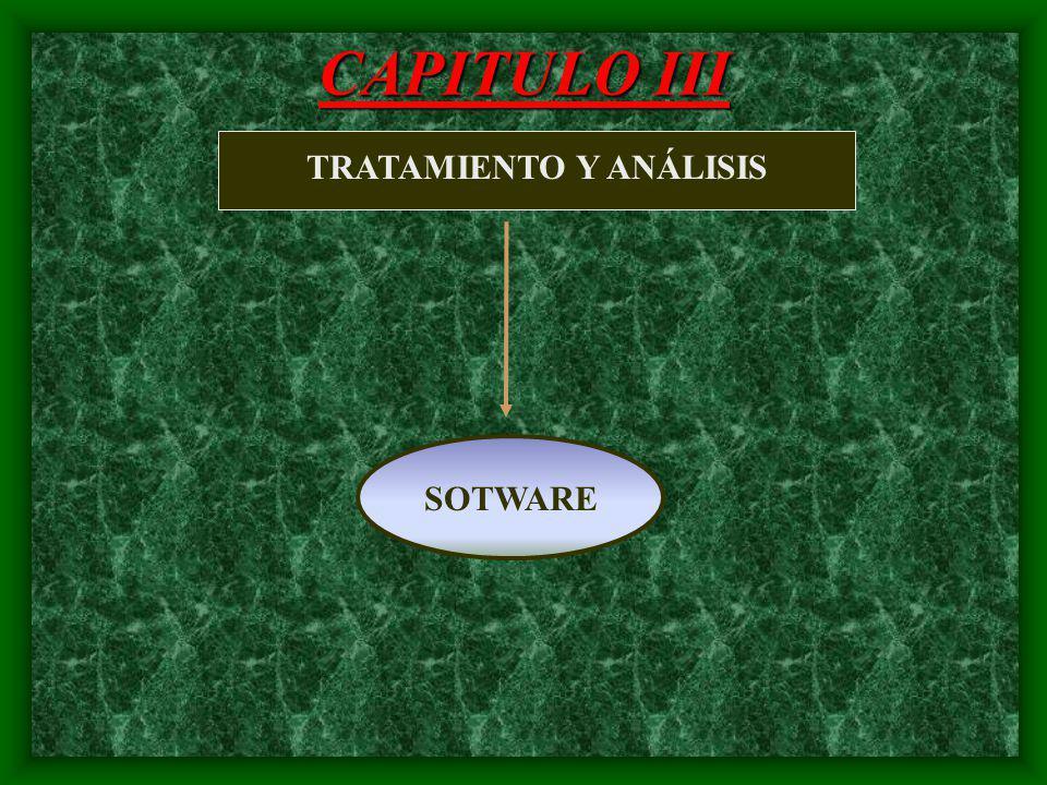 CAPITULO II sistema de motivación necesidadimpulso satisfacción acción