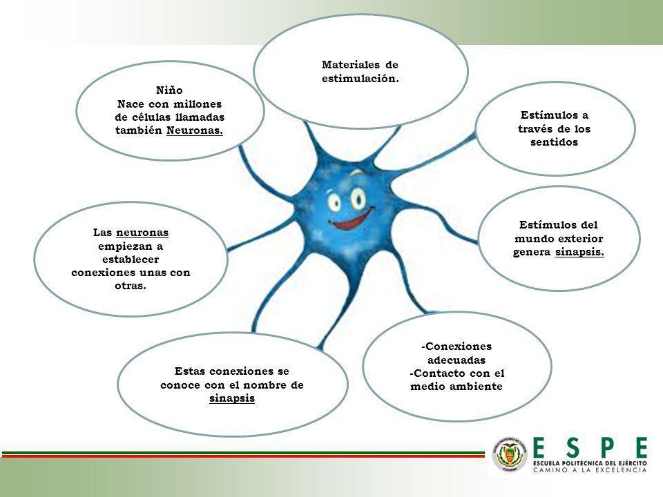 OBJETIVOS Elaborar un programa de estimulación temprana para potencializar el área sensorio-motriz de los niños/as de 0 a 2 años del Centro de Desarrollo Infantil Estrellitas del sur a través de la aplicación de técnicas de estimulación.