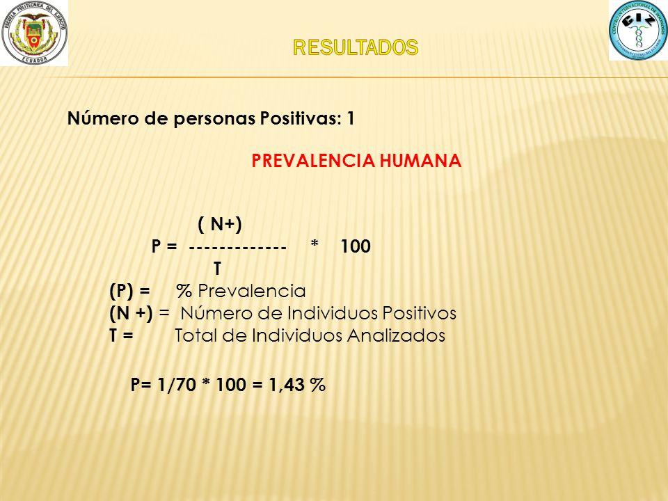 P= 1/70 * 100 = 1,43 % PREVALENCIA HUMANA ( N+) P = ------------- * 100 T (P) = % Prevalencia (N +) = Número de Individuos Positivos T = Total de Indi