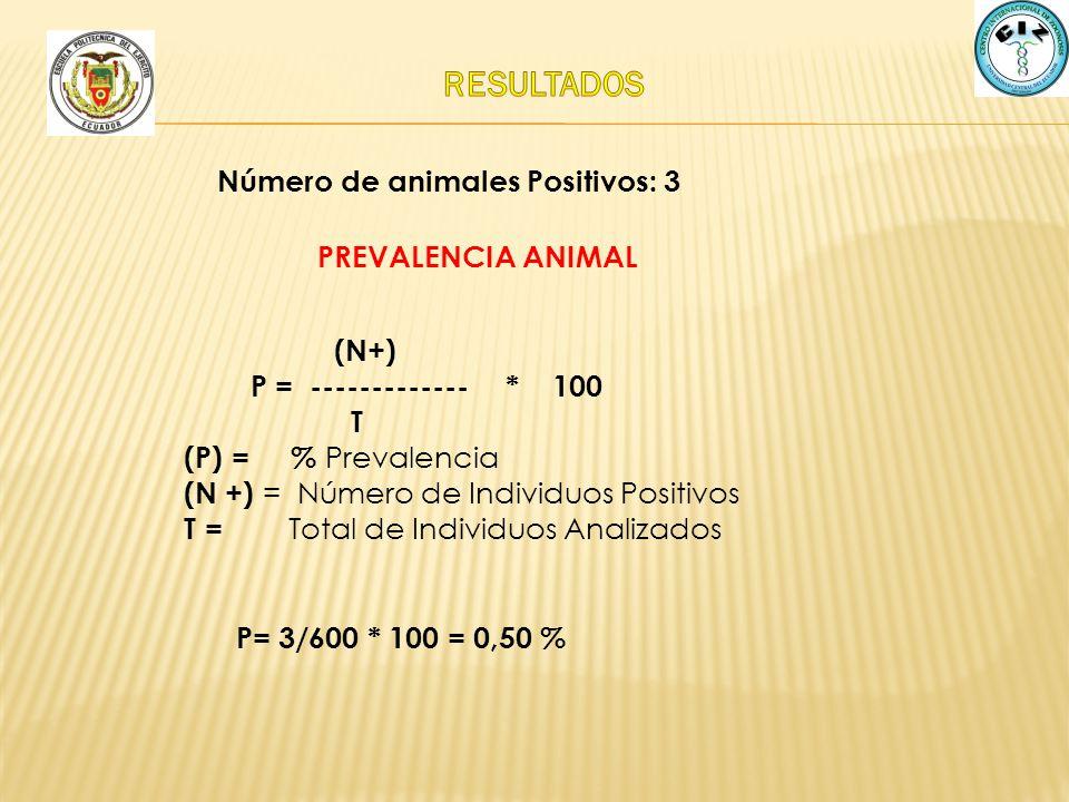 PREVALENCIA ANIMAL P= 3/600 * 100 = 0,50 % (N+) P = ------------- * 100 T (P) = % Prevalencia (N +) = Número de Individuos Positivos T = Total de Indi