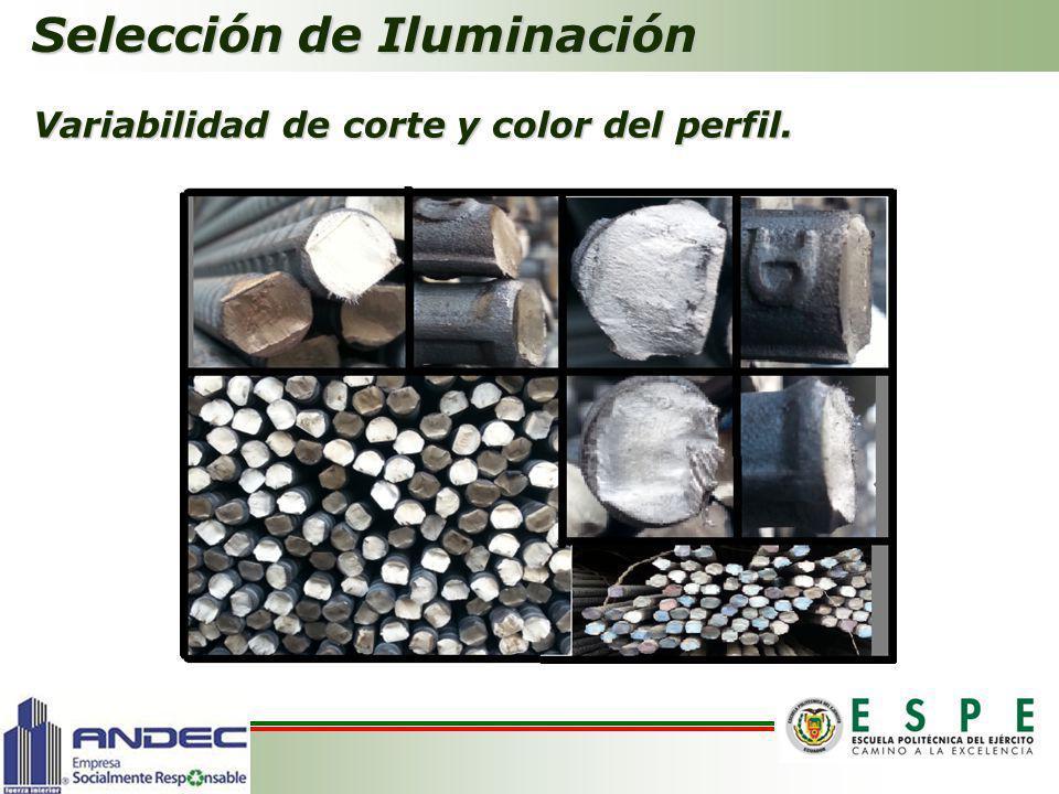 Selección de Iluminación Variabilidad de corte y color del perfil.
