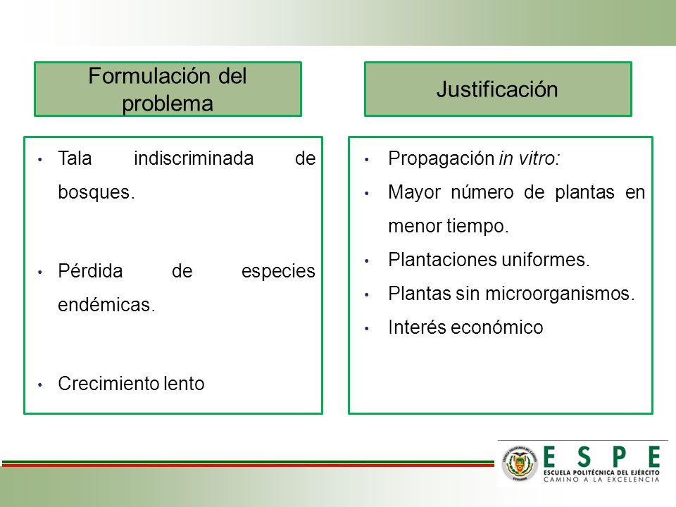 Formulación del problema Justificación Tala indiscriminada de bosques. Pérdida de especies endémicas. Crecimiento lento Propagación in vitro: Mayor nú