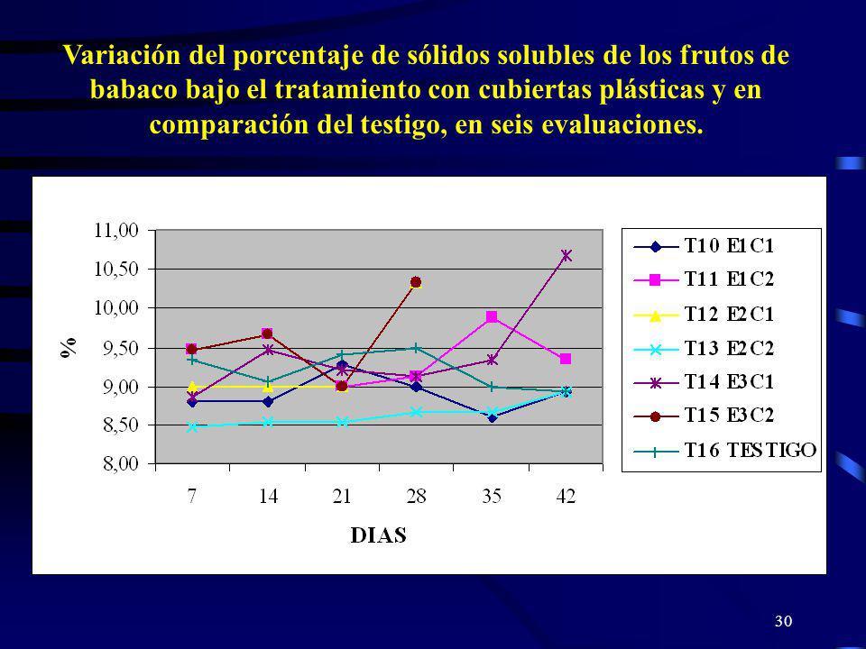 30 Variación del porcentaje de sólidos solubles de los frutos de babaco bajo el tratamiento con cubiertas plásticas y en comparación del testigo, en s