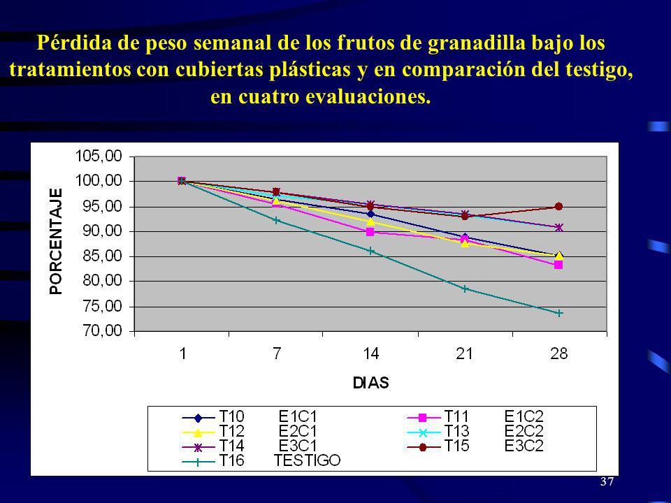 37 Pérdida de peso semanal de los frutos de granadilla bajo los tratamientos con cubiertas plásticas y en comparación del testigo, en cuatro evaluacio