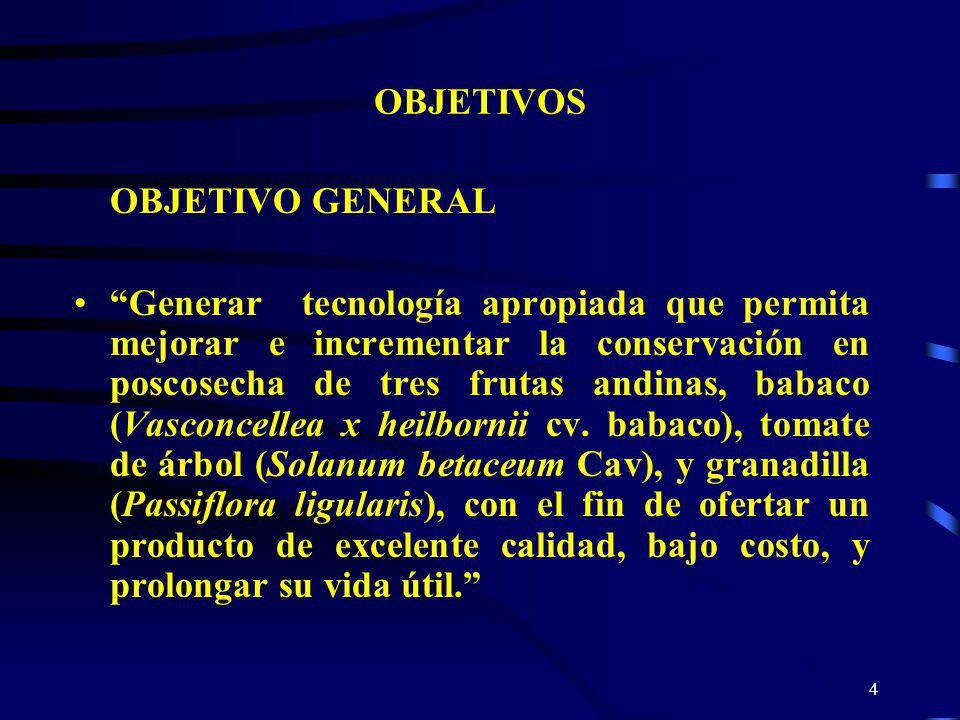 4 OBJETIVOS OBJETIVO GENERAL Generar tecnología apropiada que permita mejorar e incrementar la conservación en poscosecha de tres frutas andinas, baba