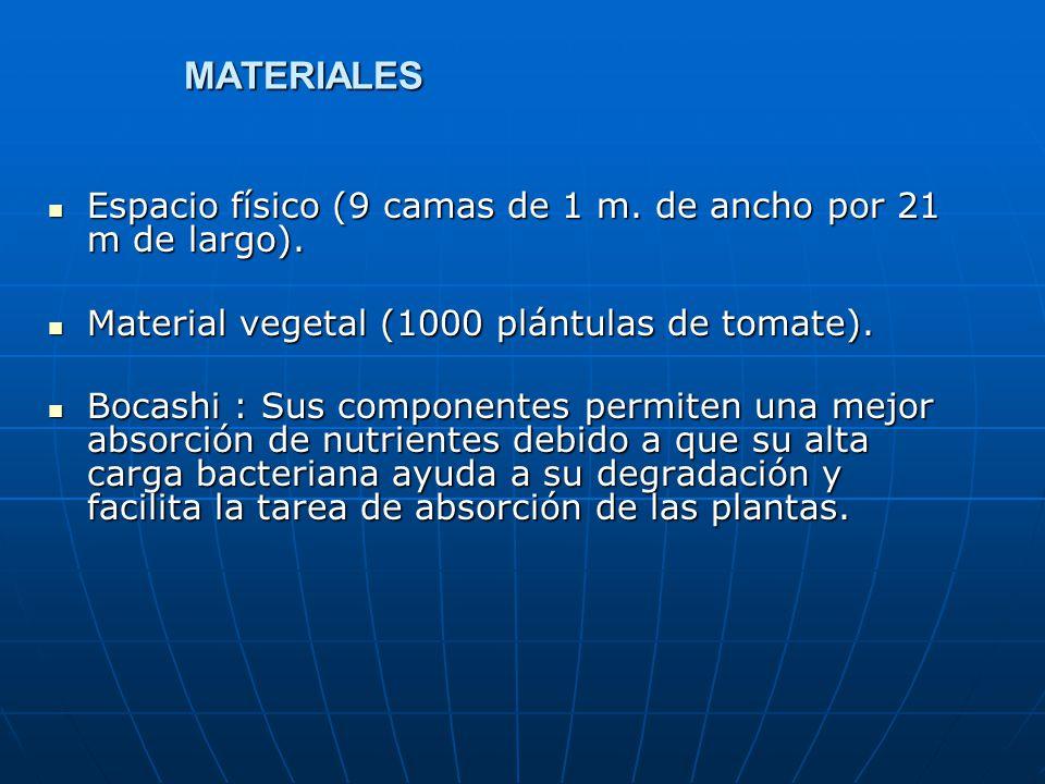 MATERIALES Espacio físico (9 camas de 1 m. de ancho por 21 m de largo). Espacio físico (9 camas de 1 m. de ancho por 21 m de largo). Material vegetal