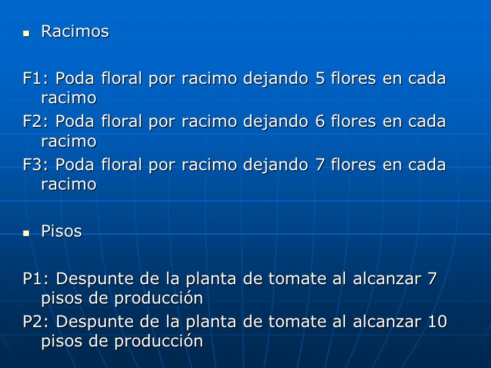 Racimos Racimos F1: Poda floral por racimo dejando 5 flores en cada racimo F2: Poda floral por racimo dejando 6 flores en cada racimo F3: Poda floral