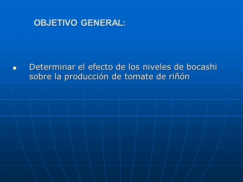 OBJETIVO GENERAL: Determinar el efecto de los niveles de bocashi sobre la producción de tomate de riñón Determinar el efecto de los niveles de bocashi